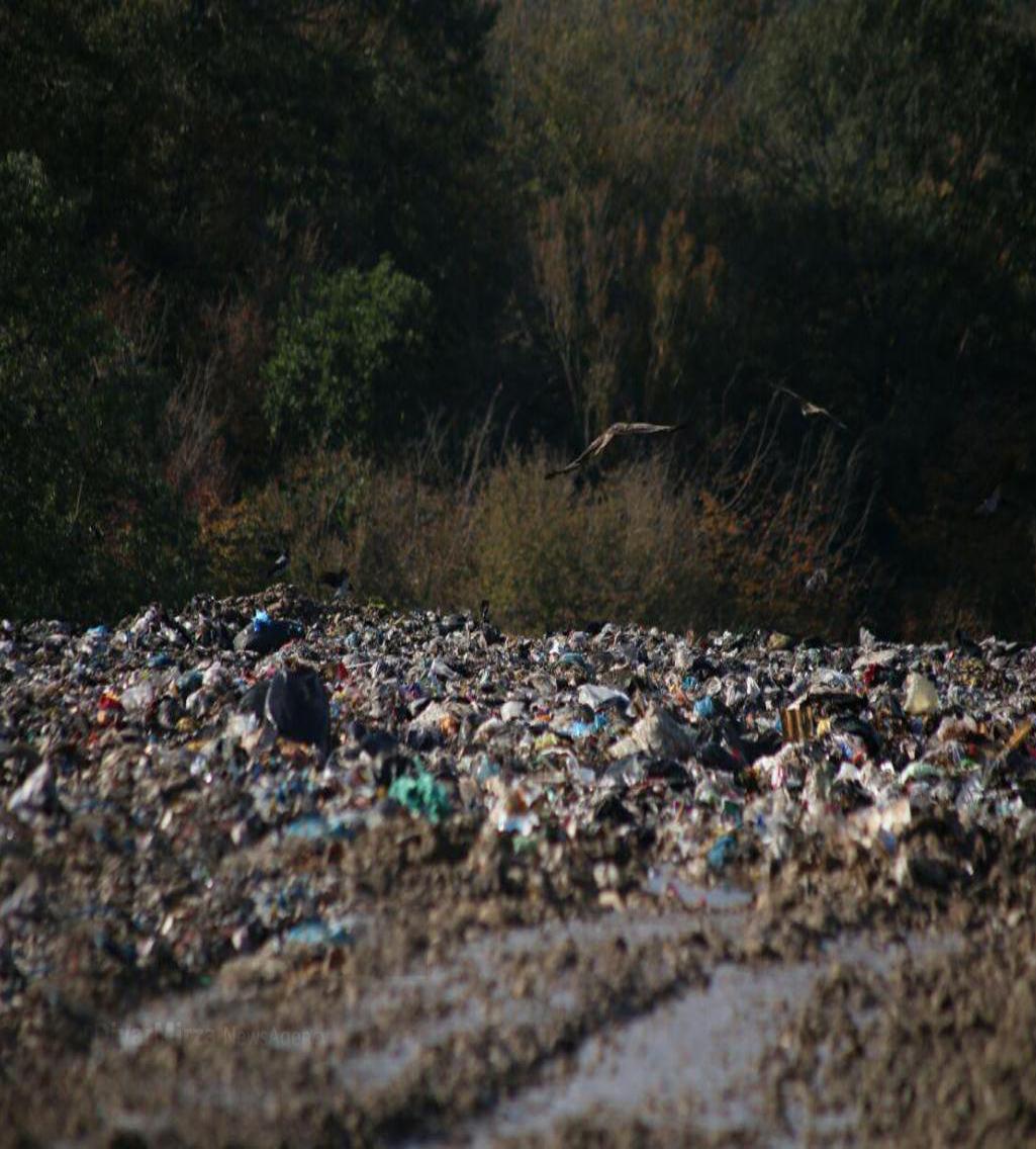 آلودگی-خاک-گیلان