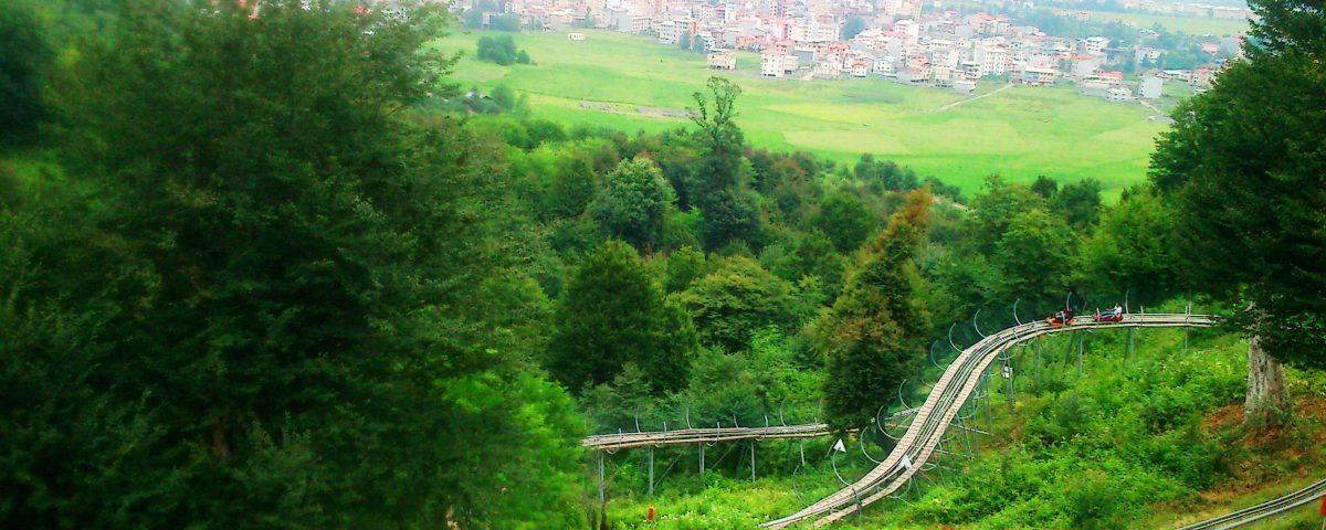 پارک جنگلی سیاه داران