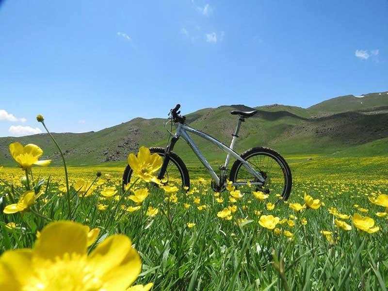 دوچرخه سواری دریاچه نئور