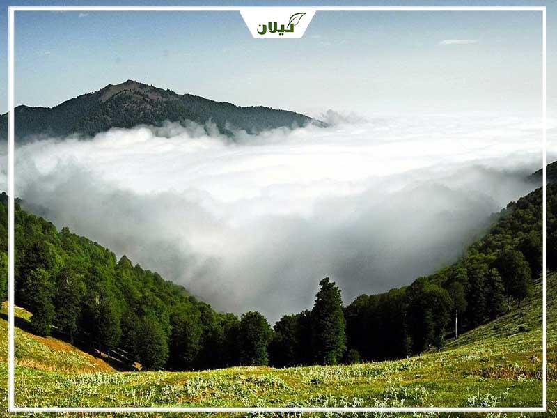 ییلاق سلانسر رستم آباد