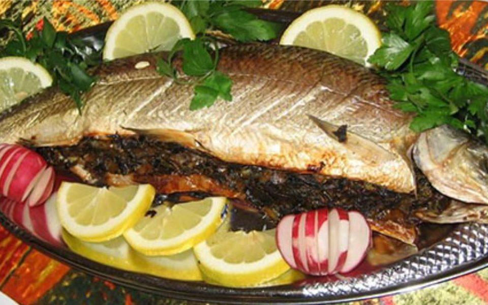 ماهی مالابیج